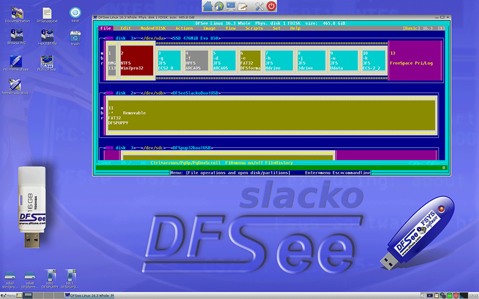 DFSee disktool, fdisk, filesystems and data recovery